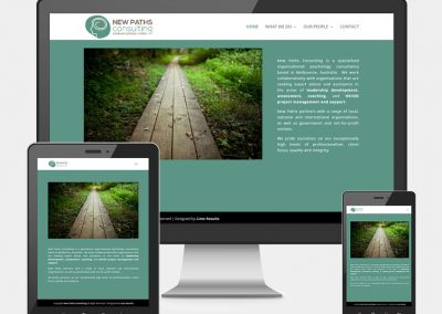 New Paths Consulting Website Project